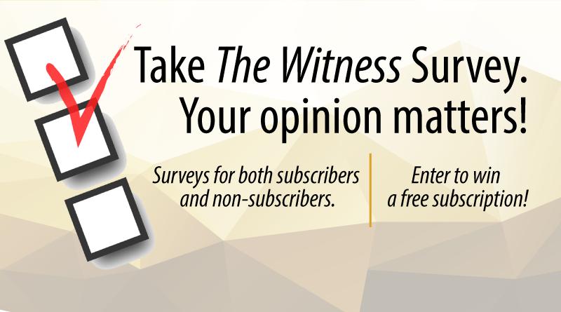 Witness Survey