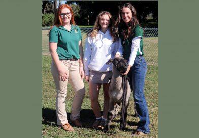 Teaching about farming also cultivates faith at Florida Catholic school